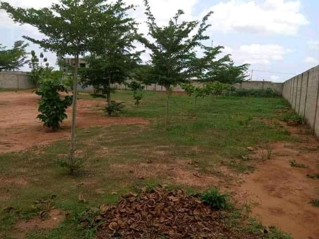 REF16688, Terrain a vendre Abomey-calavi